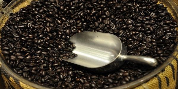 مرکز پخش انواع دانه قهوه رست
