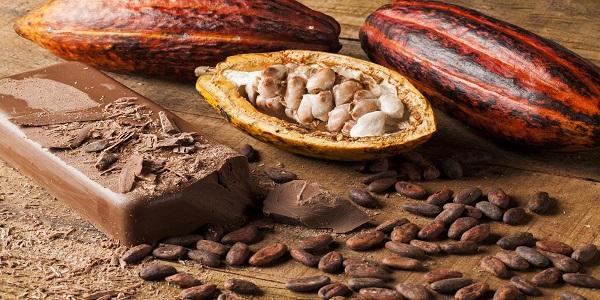فروش مستقیم از واردات انواع پودر کاکائو