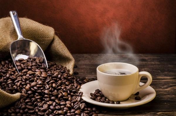 کارخانه رست انواع دان قهوه