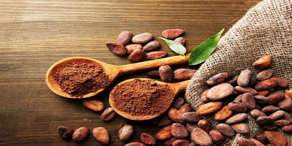 واردات پودر کاکائو مالزی