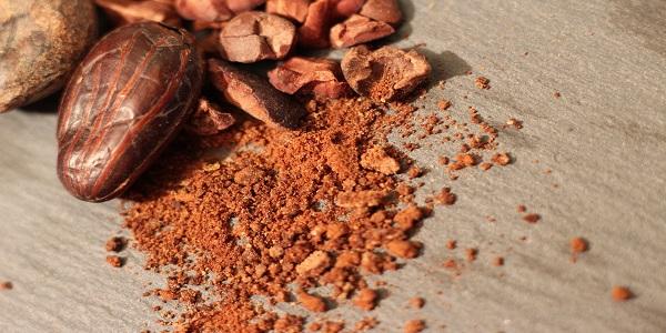 خرید پودر کاکائو ارگانیک