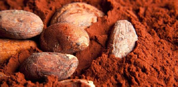 پودر کاکائو فله