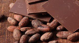 وادرات پودر کاکائو